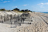 Dune Fence - Hatteras, NC
