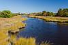 Salt Water Marsh @ Hatteras Village Park - Hatteras, NC