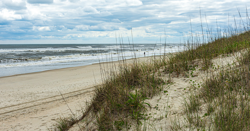 Pony Pens Beach - Ocracoke, NC, USA