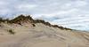 Dunes @ Pony Pens Beach - Ocracoke, NC, USA