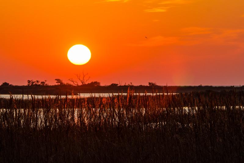 Sunset 1 Over North Pond, Pea Island NWR - Rodanthe, NC