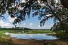 Jason's Lake - Botany Bay WMA, Edisto Island, SC