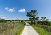 Road To The Beach II - Botany Bay WMA, Edisto Island, SC