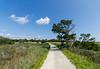 Road To The Beach II - Botany Bay WMA, Edisto Island, SC