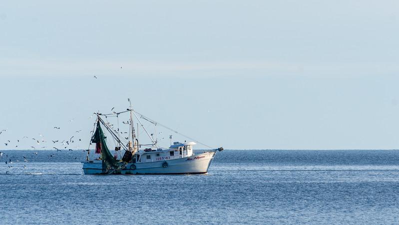 Miss Polyanna off Folly Field Beach - Hilton Head Island, SC