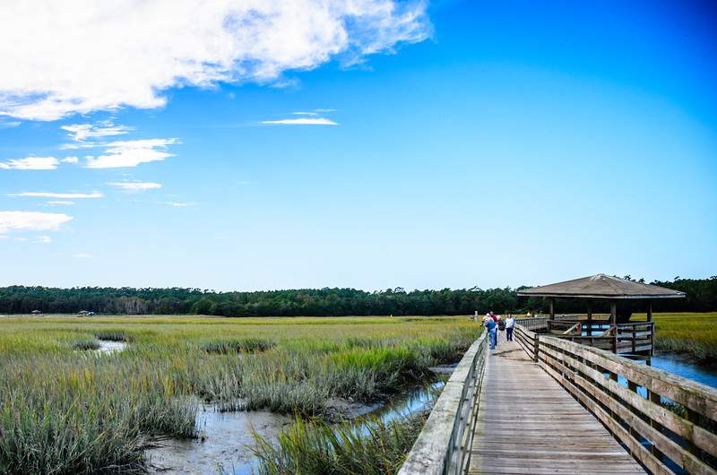 Boardwalk in the Marsh @ Huntingdon Beach State Park - Murrells Inlet, SC
