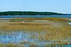 Mackay Creek & Egret @ Pinckney Island NWR - Beaufort County, SC