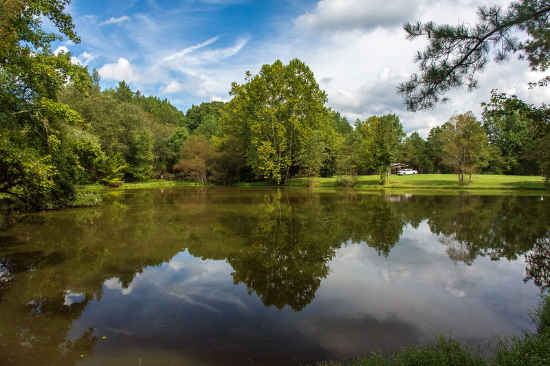 Pond 3 @ Albright Scout Reservation - Chesterfield County, VA