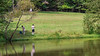 Scouts Fishing @ Albright Scout Reservation - Chesterfield County, VA