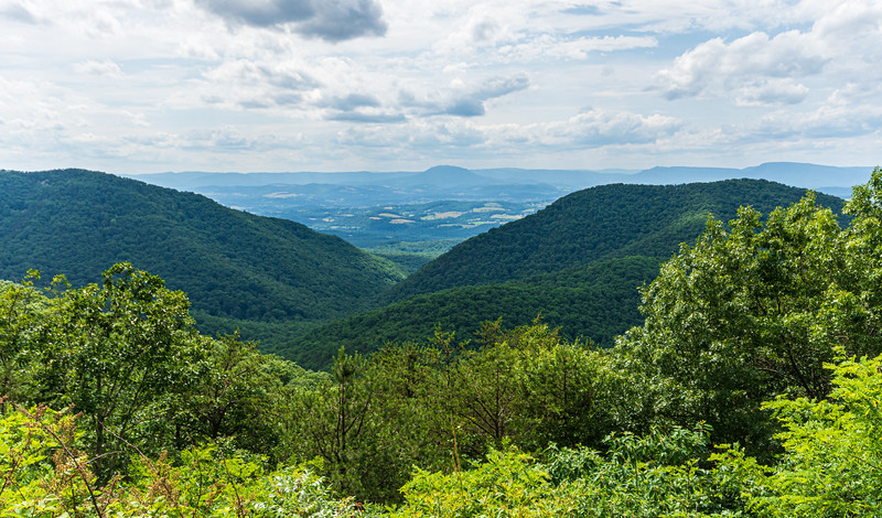 Irish Creek Valley Overlook @ MP 42.2 on the Blue Ridge Parkway - Montebello, VA