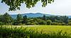 Hills @ Monticello - Charlottesville, VA