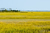 Marsh & Lighthouse @ Eastern Shore NWR - Northampton County, VA