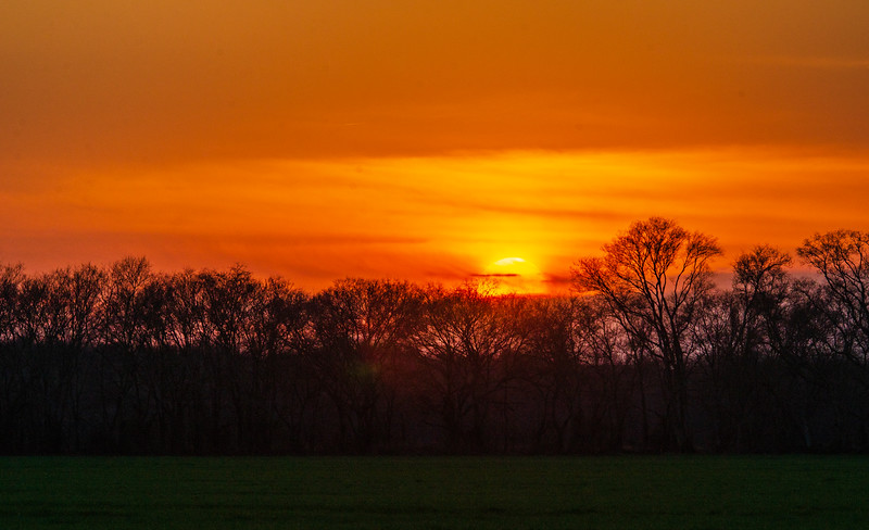 Virginia Sunset - Hanover County, VA