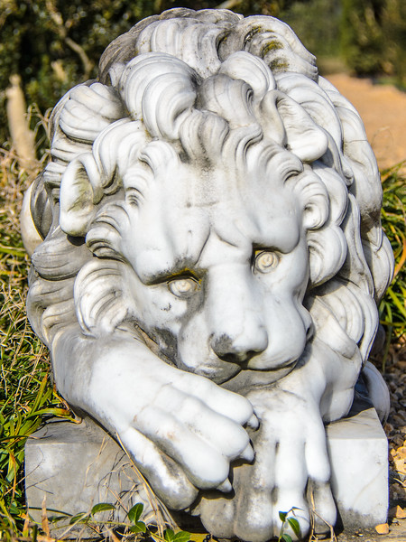 Lion Statue @ James Madison's Montpelier - Montpelier Station, VA