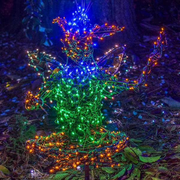 Fantasy @ Lewis Ginter Botanical Garden - Richmond, VA