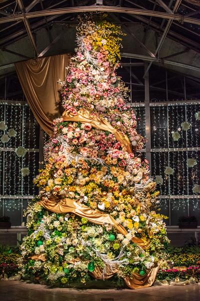 Christmas Tree @ Lewis Ginter Botanical Garden - Richmond, VA