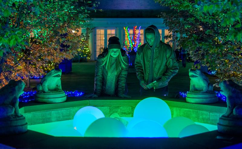 Light Balls @ Lewis Ginter Botanical Garden - Richmond, VA