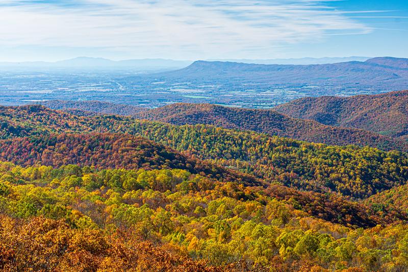 Fall Foliage @ The Point Overlook - Mile 55.5, Skyline Drive, Shenandoah National Park, Elkton, VA