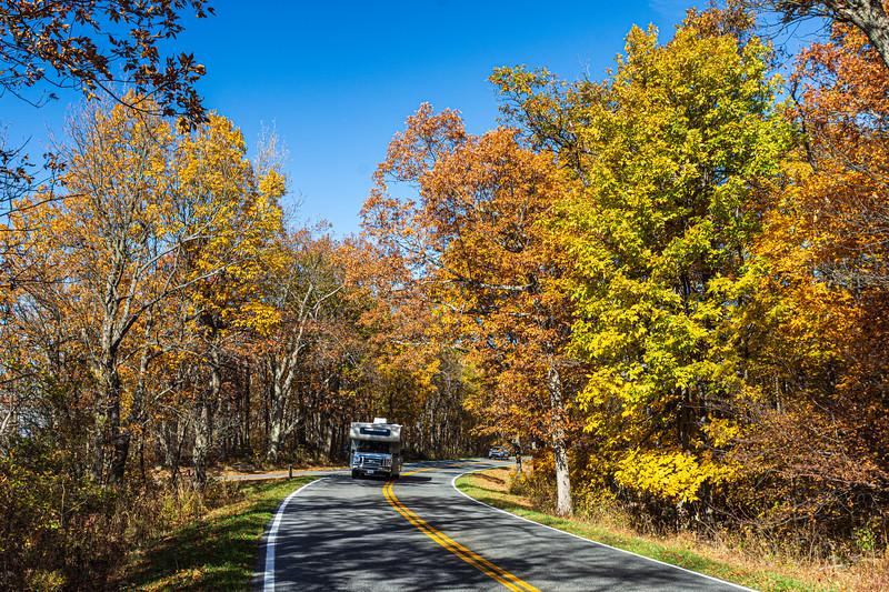 Skyline Drive 1 @ Franklin Cliffs Overlook - Mile 49, Skyline Drive, Shenandoah National Park, Stanley, VA