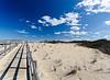 Dune Trail @ Back Bay NWR - Virginia Beach, VA