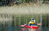 Fisherman Kayaking on Owl Creek @ Virginia Aquiarium - Virginia Beach, VA
