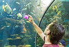 Taking a Photo in The Tunnel @ Virginia Aquiarium - Virginia Beach, VA