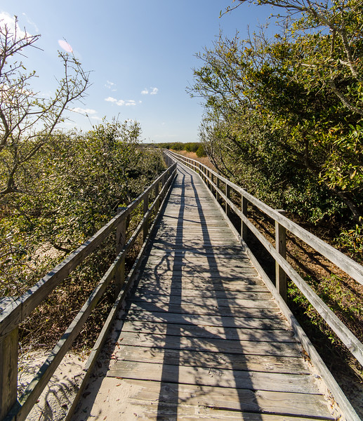 Dune Trail Boardwalk @ Back Bay NWR - Virginia Beach, VA