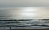 Sunrise @ Barclay Towers - Virginia Beach, VA