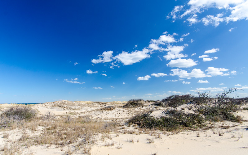 Sand & Sky @ Back Bay NWR - Virginia Beach, VA