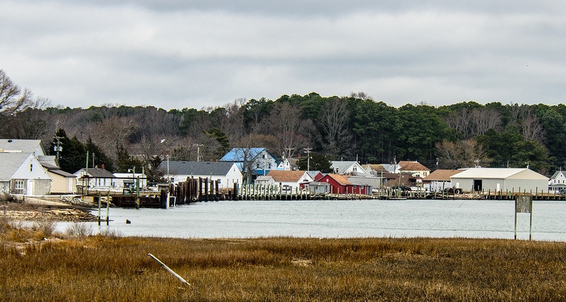Aquaculture Businesses - Willis Wharf, VA