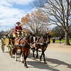 Carriage Ride @ Colonial Williamsburg - Williamsburg, VA