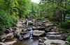 Glade Creek @ Babcock State Park - Clifftop, WV