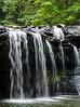 Brush Creek Falls Portrait II - Athens, Mercer County, WV
