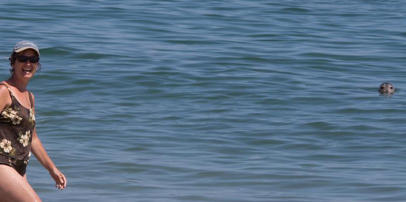 Kathy near baby seal.  Monomoy Island, Cape Cod