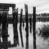 salt pond, Wellfleet