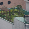 green roof with hot water solar collector.
