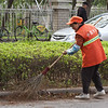 street cleaners like this woman were all over the city working all day, but most common in the morning. They all use the same bamboo brooms.