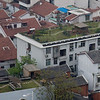 green roofs were visible all over the city skyline from the tower.  Many buildings also had solar hot water systems on the roofs.