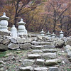 grave site for Buddhist monks