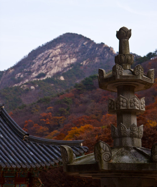 We had one afternoon free so my host from MSC Korea took me on a walk to a temple in Daejeon.
