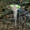 Cenote Sambula - Valladolid Yucatán