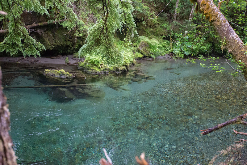 clear blue water of the Indian River.  The salmon were not in the river yet.