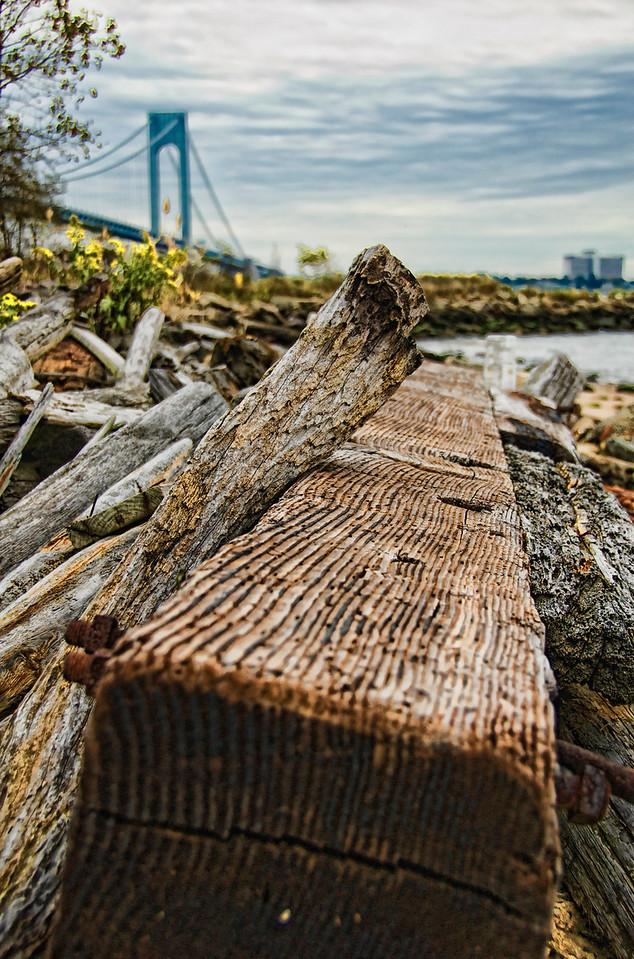 Staten Island Driftwood