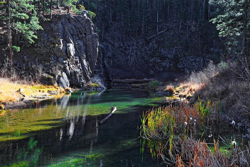 Spring Creek along the Flume Trail near Sheridan Lake