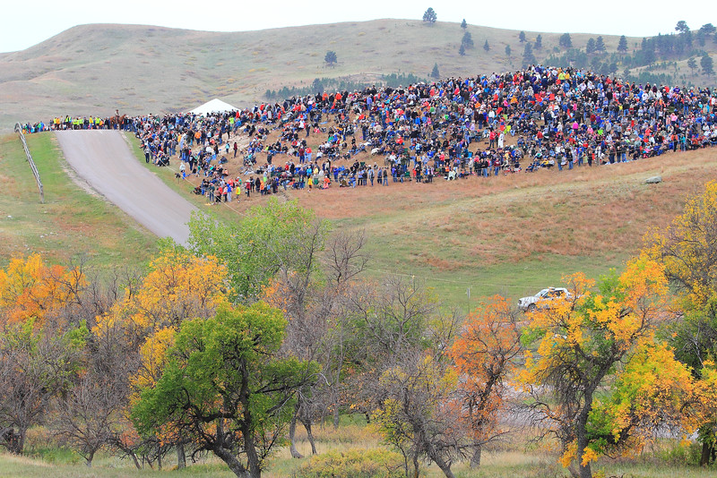 2016 Buffalo Roundup in Custer State Park