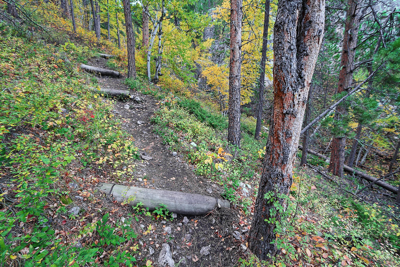 Trail of 76 in Spearfish Canyon