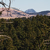 Bear Butte viewed from the Tinton Trail near Spearfish