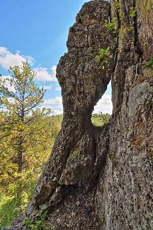 Near Citadel Rock in the Black Hills south of Spearfish