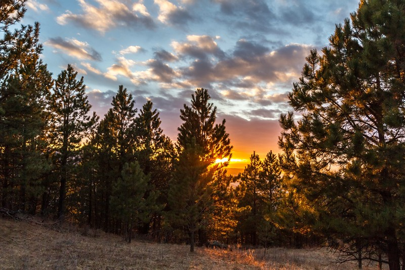 Golden hour on Lookout Mountain in Spearfish
