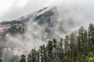 After the rain in Spearfish Canyon